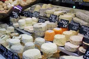 Cheese-01-300x200