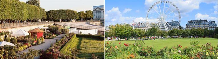 Jardin des tuileries 4