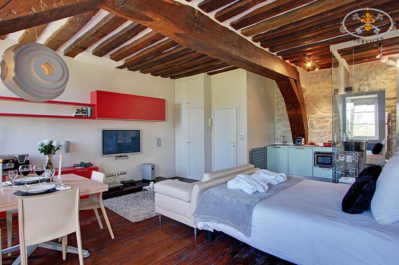 Paris-modern-studio-apartment-790x525